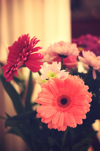 noël fleurs de table
