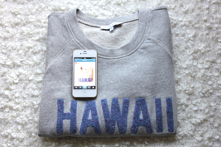 SWEAT_HAWAII_SANDRO_2