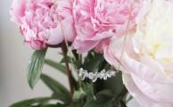 collier-cristaux-juste-juliette-bijoux-1