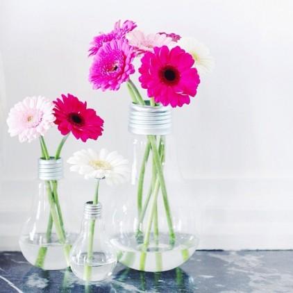 VASES_FLOWERS_AMPOULES_VASE