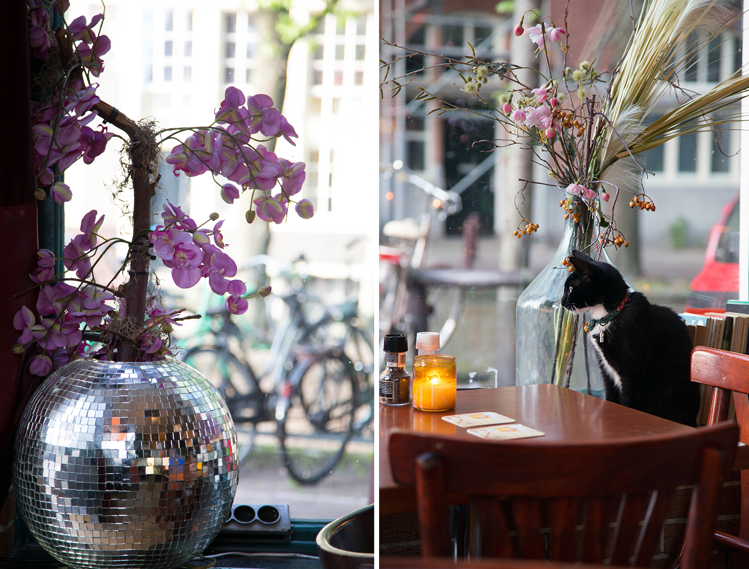 T_TUINFEEST_CAFE_AMSTERDAM_2
